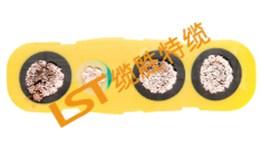 行车电缆(特种加强型)