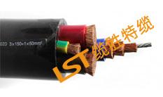 双护套卷筒电缆(LST专利产品)