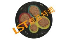 特种加强型起重机电缆(LST专利产品)